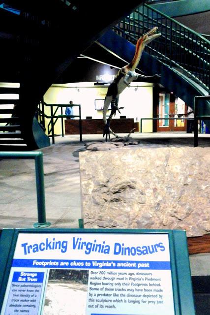 Virginia Living Museum via foobella.blogspot.com